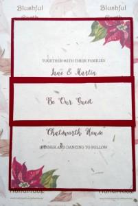 Poinsettia Grass Paper Invitation