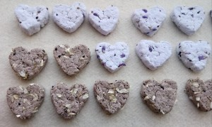 mixture of seed heart bombs